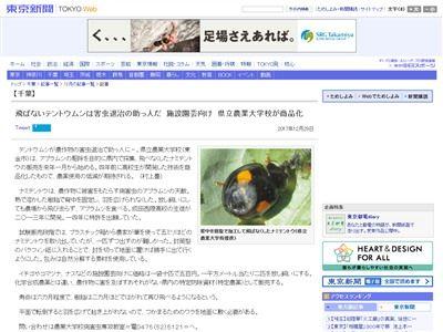 てんとう虫 害虫駆除に関連した画像-02