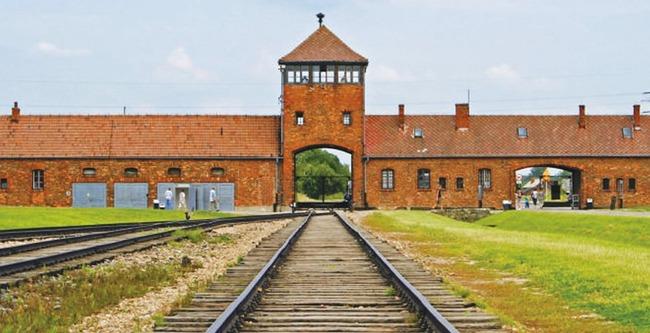 ドイツ 新型コロナ 収容所 刑務所に関連した画像-01