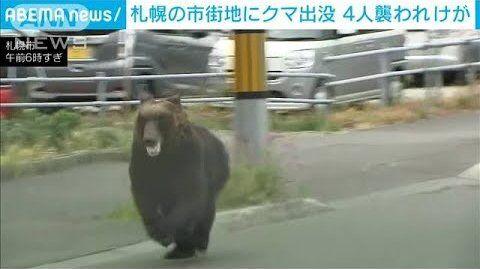 札幌 熊 マスコミ マスゴミ 自衛隊に関連した画像-01