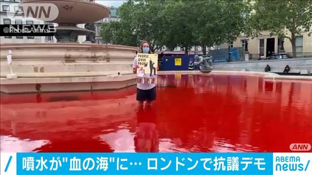 動物愛護団体 新型コロナウイルス 抗議デモ 感染拡大 搾取 噴水 染料に関連した画像-03