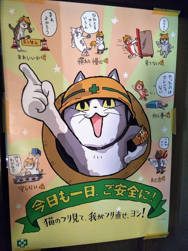 現場猫 現実に関連した画像-05