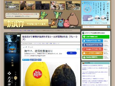 果物 フルーツ 成熟 長持ち 遅らせる マレーシア バナナに関連した画像-02