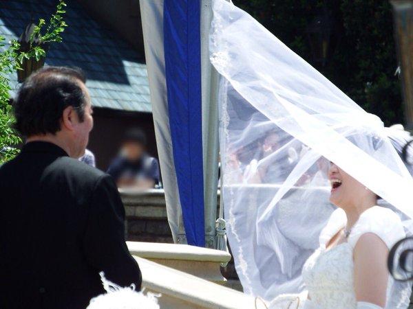 西又葵 結婚式 ディズニーランド シンデレラ城 イラストレーター 三宅淳一に関連した画像-19