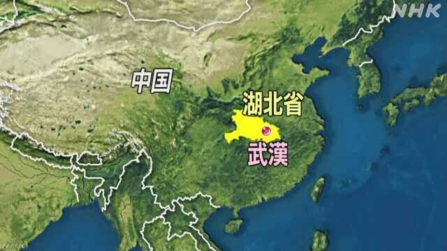 新型コロナウイルス 中国 武漢 従来株 変異種 ニュース マスコミに関連した画像-01