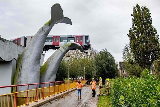 オランダ 地下鉄 クジラ 奇跡 像 事故に関連した画像-04