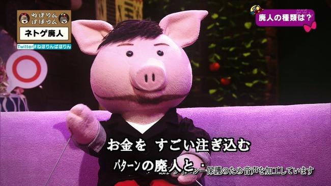 ネトゲ ネトゲ廃人 NHK 特集 ねほりんぱほりんに関連した画像-09