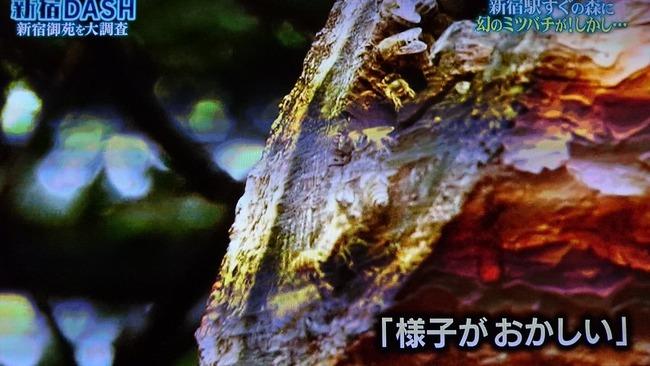 TOKIOに関連した画像-09