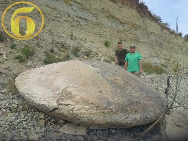 UFO 化石に関連した画像-03
