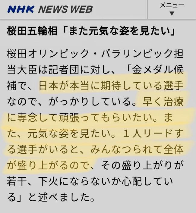 池江選手 桜田五輪相 失言に関連した画像-03
