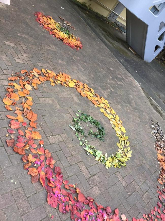落ち葉 大学 芸術 アートに関連した画像-03