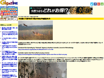 鳥 狩り 火に関連した画像-02
