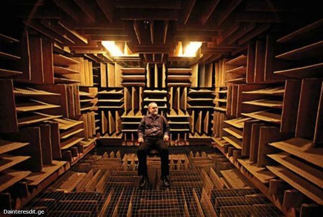 世界一静かな場所 無響室 発狂に関連した画像-02