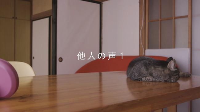 猫 かるかん 声 病気に関連した画像-12