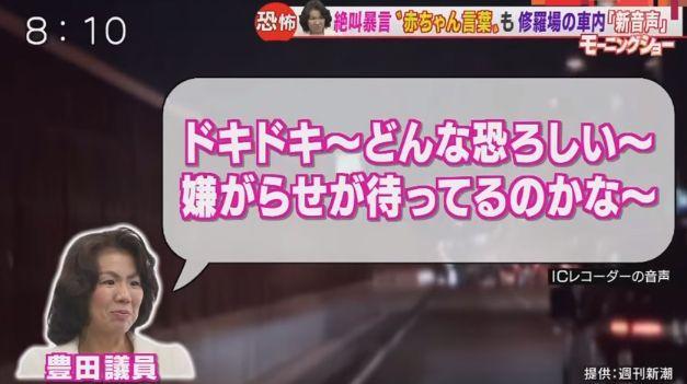 豊田真由子 赤ちゃん言葉 罵倒 動画 公開 秘書 あるんでちゅか?に関連した画像-05