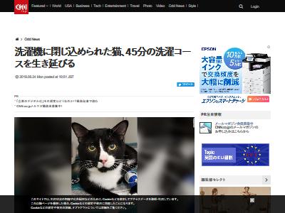 猫 洗濯機 重症に関連した画像-02