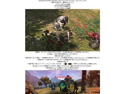 ドラゴンズドグマオンライン 課金に関連した画像-02