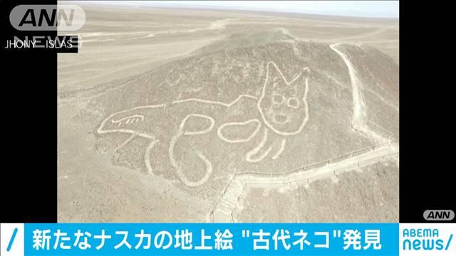 ナスカの地上絵 ペルー 新作 へたくそ ねこに関連した画像-03