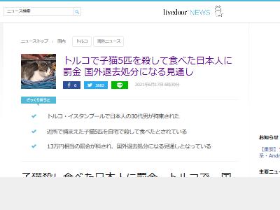 トルコ 子猫 日本人 罰金 国外退去に関連した画像-02