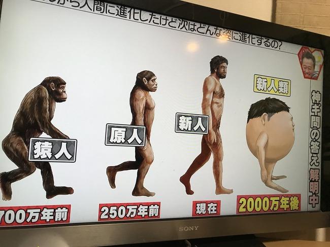 人類 人間 進化 2000万年後に関連した画像-02