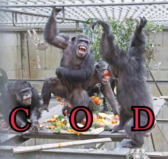 ツイッター ゲーム イメージ 画像 APEX BF 荒野行動 CODに関連した画像-05