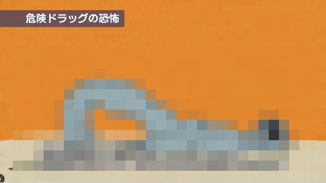 神奈川県 ドラッグ CMに関連した画像-01