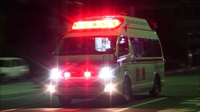 正月 餅 入浴 事故 新型コロナウイルス 医療機関 病院に関連した画像-01