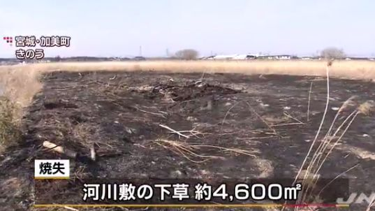 虫眼鏡 宮城県 火事に関連した画像-01