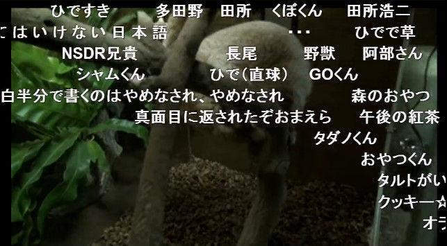 淫夢くん ニコニコ公式 スローロリス ニコニコ生放送に関連した画像-05