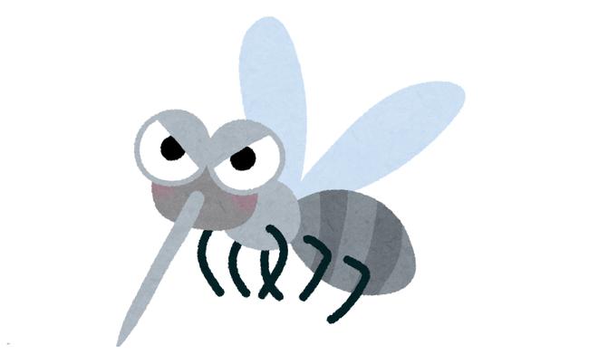 【ヤバイ】連日の猛暑でおとなしかった蚊の逆襲がそろそろ始まる模様