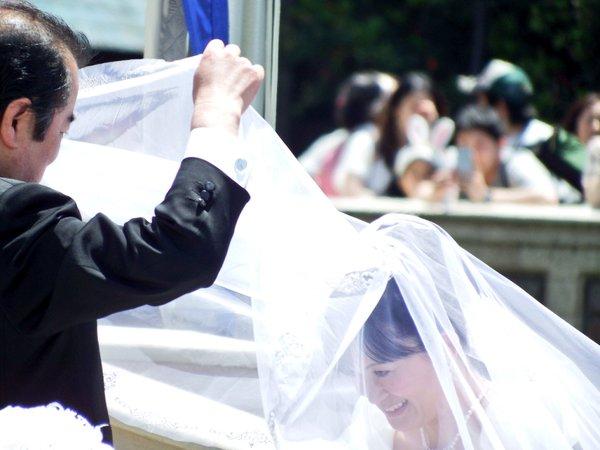 西又葵 結婚式 ディズニーランド シンデレラ城 イラストレーター 三宅淳一に関連した画像-17