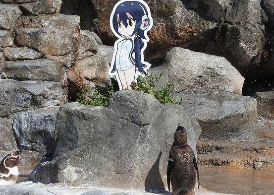 けものフレンズ けもフレ 東武動物公園 グレープ フルルに関連した画像-01