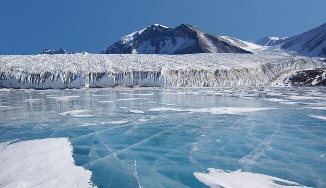 南極 森林 湿地 に関連した画像-01