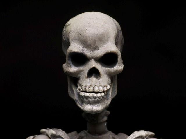 遺骨に関連した画像-01