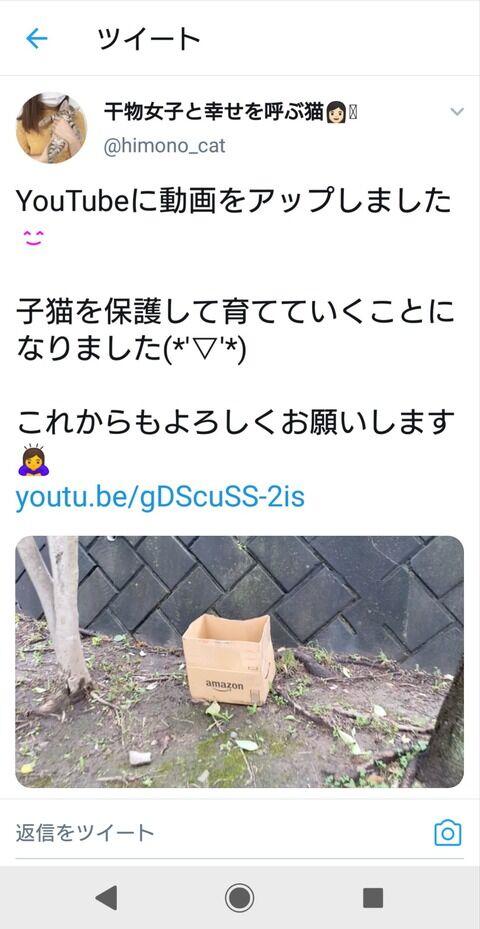 動物 YouTuber 猫 自演に関連した画像-02