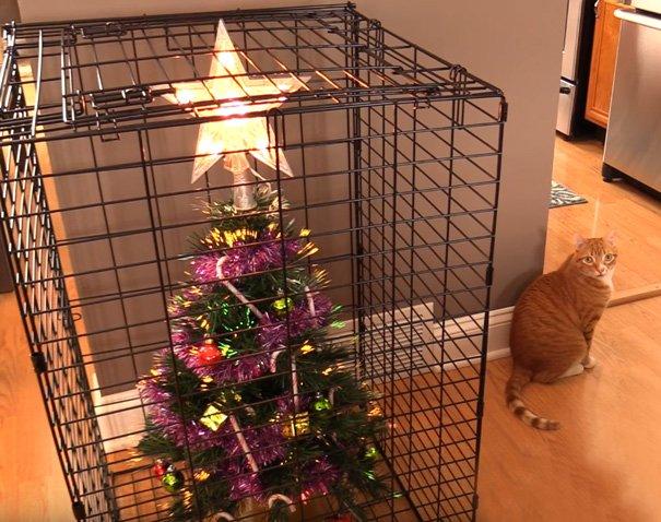 クリスマスツリー 猫 ネコ 対策に関連した画像-03