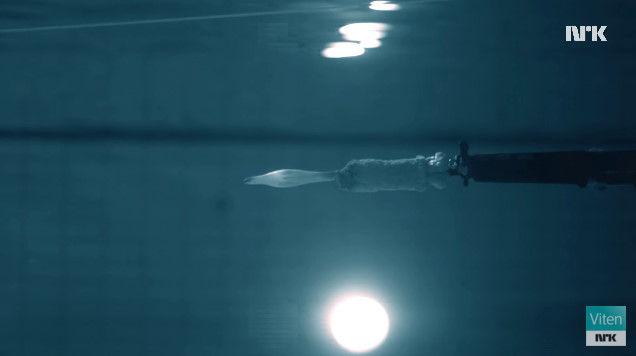 プール 科学者 マッドサイエンティスト 銃 実験に関連した画像-07