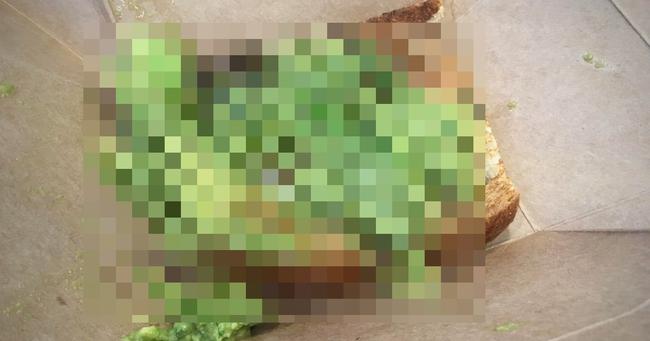 イギリス ロンドン アボカドトースト 見た目 酷いに関連した画像-01
