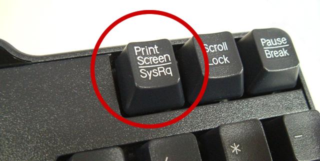 著作権侵害 違法ダウンロード 海賊版サイト スクリーンショットに関連した画像-01