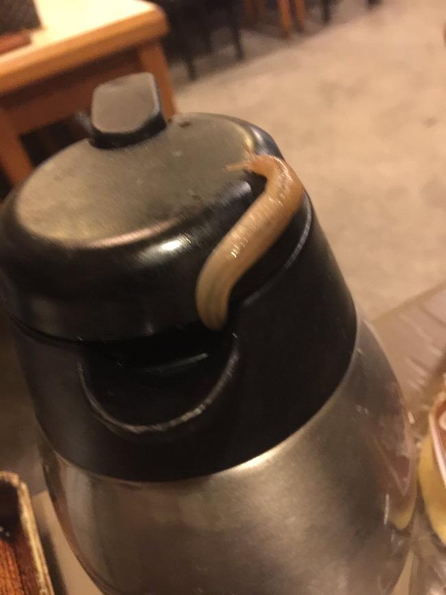 蕎麦屋 ピッチャー ナメクジに関連した画像-02