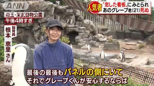 けものフレンズ けもフレ 東武動物公園 グレープ フルルに関連した画像-12