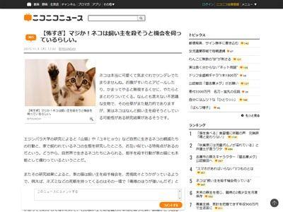猫 飼い主 殺す機会に関連した画像-02