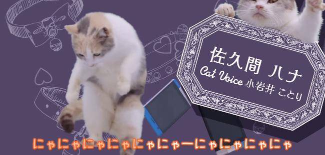 au ネコ にゃにゃにゃにゃ食堂 小岩井ことり 阿澄佳奈に関連した画像-06