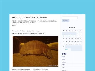 ダイオウグソクムシ ダイオウグソクムシさんに関連した画像-06