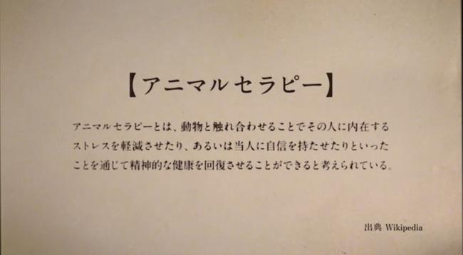 南條愛乃 ナンジョルノ シロクマ HALLS デリバリーベアサービス CMに関連した画像-02