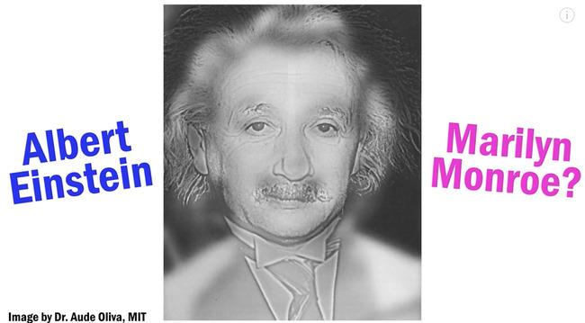 視力 アインシュタイン マリリン・モンローに関連した画像-03