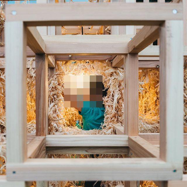 新宿 東京デザインウィーク 火災 展示物 素の家に関連した画像-06