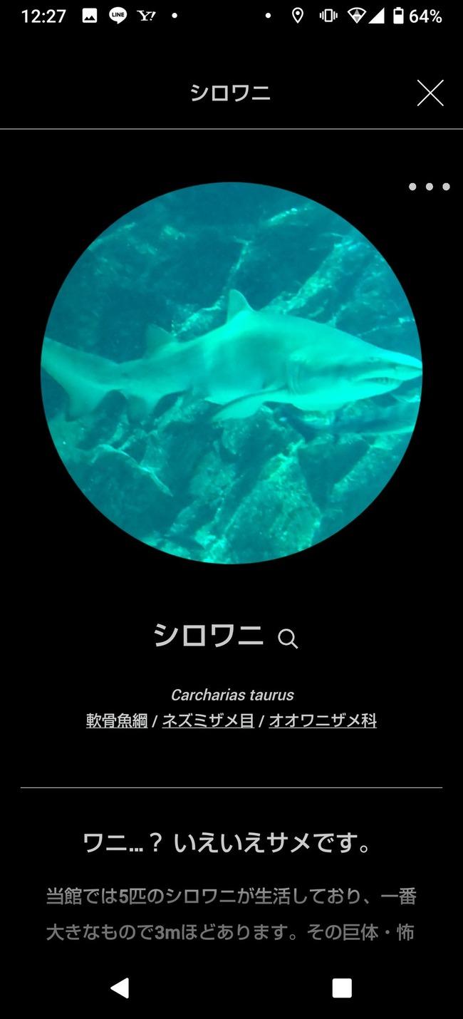マリンワールド 図鑑 ツイッター アプリに関連した画像-02