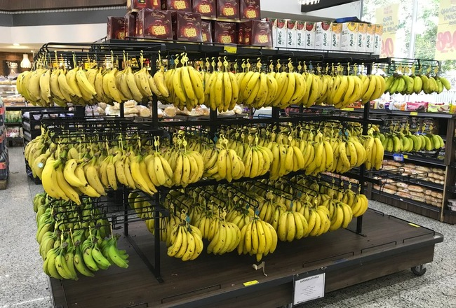 ドンキーコング ボーナスステージ スーパー バナナに関連した画像-02