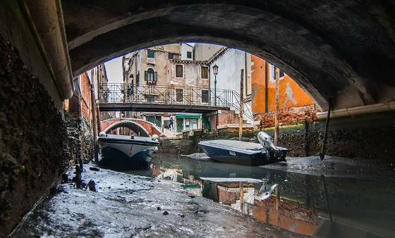 水の都 ベネツィア 水位に関連した画像-05