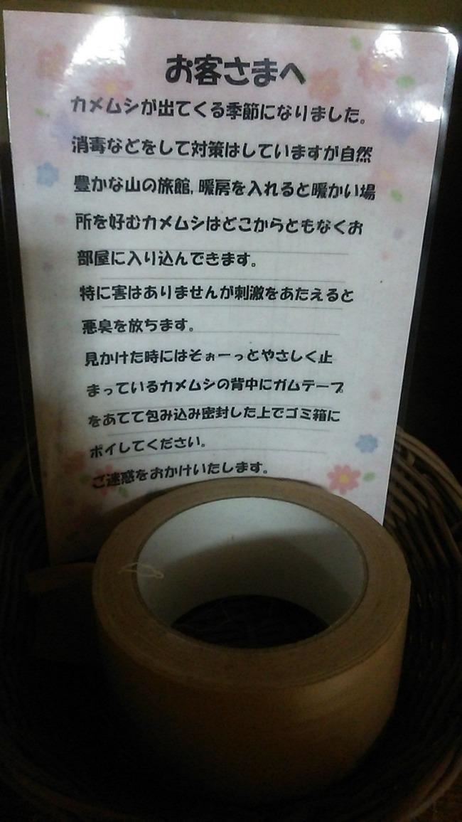温泉宿 戦闘 指南書 カメムシに関連した画像-02